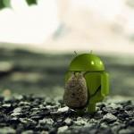 Neue Beweise im Android-Streit in Russland! Gericht entscheidet gegen Google