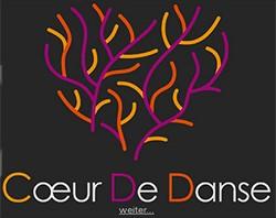 Responsive Website und WordPress als CMS für einen Tanzclub aus Köln