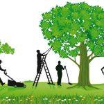 Evergreen: Content ohne Verfallsdatum