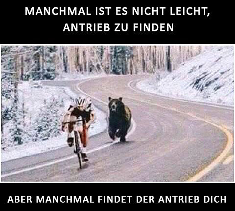 Facebook Zitat / Meme