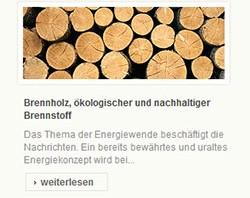 Webdesign und SEO für einen Brenn- und Kaminholz Großhändler