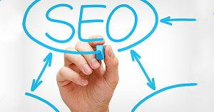 SEO in Organisation