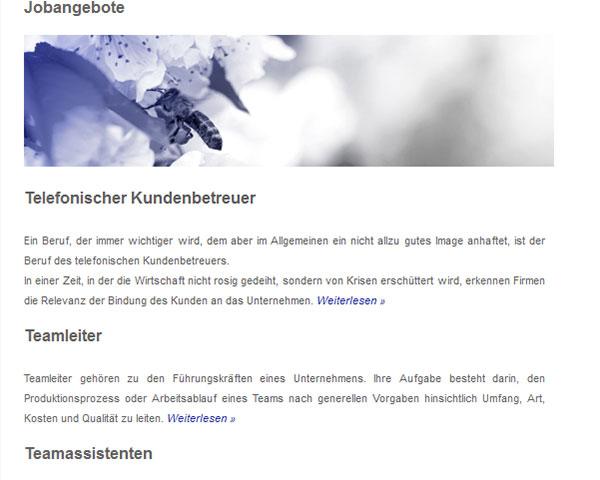 RPS Raichle. Jobdatenbank