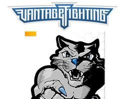 SEO für einen Fightwear und Equipment Online Shop für Kampfsport, MMA und Boxen