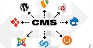 Auswahl des CMS