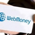 WebMoney bekommt europäische FCA-Lizenz