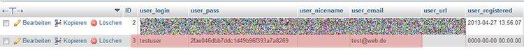 WP User in der Datenbank erstellen Schritt 3